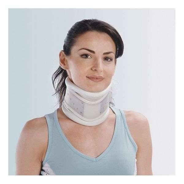 Collare con mentoniera da portare dopo l'intervento per precauzione.